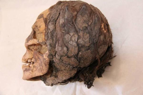 skull-600-1