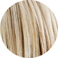 Amostra de cabelo sobre o qual o Matiz P.21 Violet deve ser aplicado.