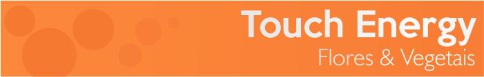 Touch Energy - Flores & Vegetais Grandha, linha de terapia capilar.