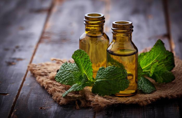 Refresh e os benefícios da lavanda, calêndula e hortelã na terapia capilar, por Rosângela Lampert.