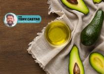 Óleo de Abacate: Por que e quando devo usar? Por Tony Castro. Blog Grandha.