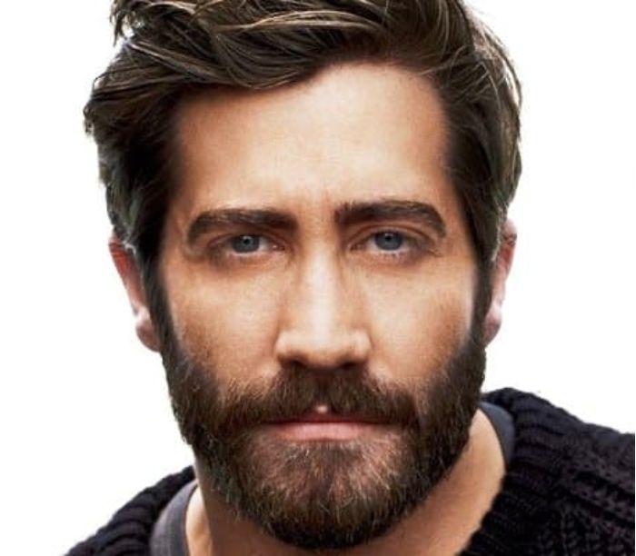 Barba média. Modelos de barba.