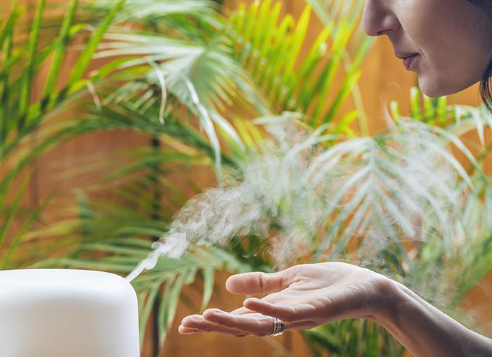 Difusor elétrico é ferramenta importante para a aromaterapia.