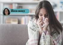 Doenças respiratórias: aromaterapia para rinite, bronquite, gripe e mais.